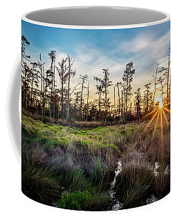 Coffee Mug featuring the photograph Bonnet Carre Sunset by Andy Crawford