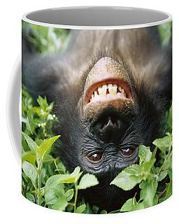 Bonobo Smiling Coffee Mug