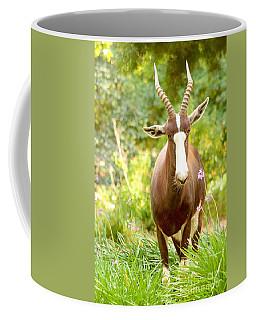 Bontebok Coffee Mug