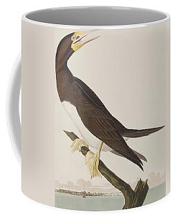 Booby Gannet   Coffee Mug