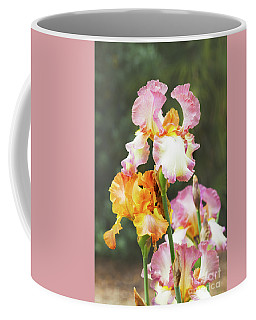 Booming Pink  And Orange Irises Coffee Mug