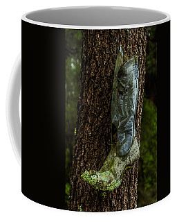 Boot Nest Coffee Mug