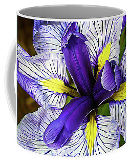 Boothbay Beauty Coffee Mug