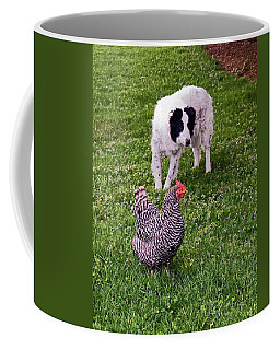 Border Collie Herding Chicken Coffee Mug