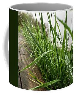 Border Coffee Mug