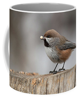 Boreal Chickadee Coffee Mug