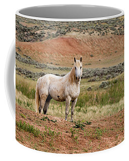 Coffee Mug featuring the photograph Boreal by Ronnie and Frances Howard