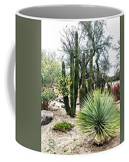 Borrego Botanical Garden Coffee Mug