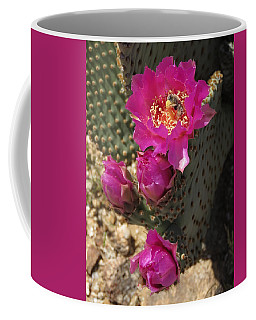 Borrego Springs Bloom 6 Coffee Mug