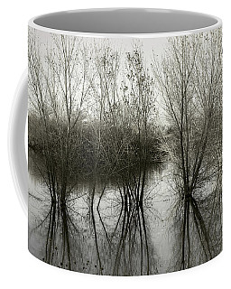 Bosque Reflection Coffee Mug