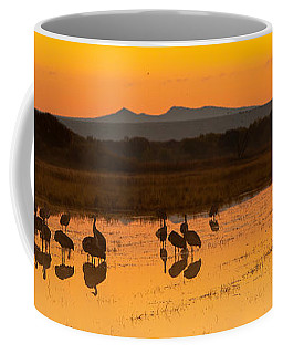 Bosque Sunrise Coffee Mug