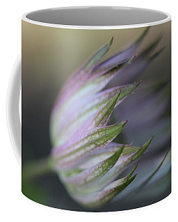 Botanica ... Flight Coffee Mug by Connie Handscomb
