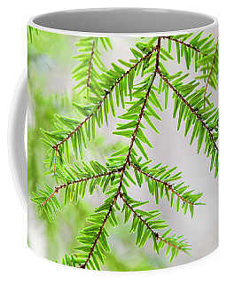 Coffee Mug featuring the photograph Botanical Abstract by Christina Rollo