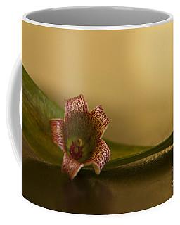 Bottle Tree Flower Coffee Mug