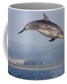 Bottlenose Dolphin - Scotland #3 Coffee Mug