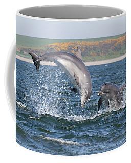 Coffee Mug featuring the photograph Bottlenose Dolphin - Moray Firth Scotland #49 by Karen Van Der Zijden