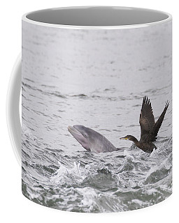 Baby Bottlenose Dolphin - Scotland #10 Coffee Mug