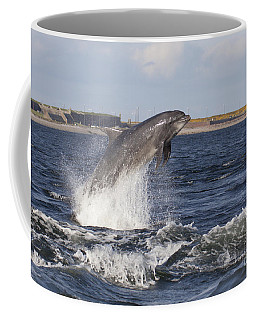 Bottlenose Dolphin - Scotland  #26 Coffee Mug