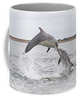 Bottlenose Dolphins - Scotland #1 Coffee Mug