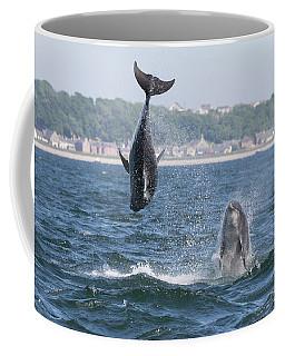 Coffee Mug featuring the photograph Bottlenose Dolphins - Moray Firth Scotland #46 by Karen Van Der Zijden
