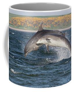 Coffee Mug featuring the photograph Bottlenose Dolphins - Moray Firth Scotland #47 by Karen Van Der Zijden