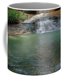 Bottom Of Falls Coffee Mug