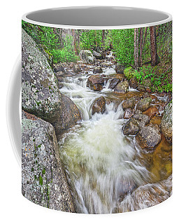 Boulders Of A Glaucous Appearance  Coffee Mug