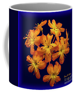 Bouquet In A Box Coffee Mug by Donna Brown