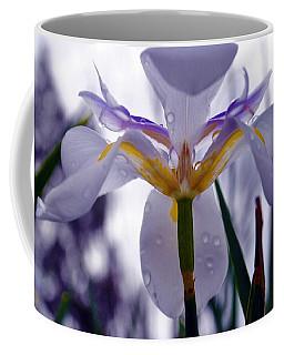 Coffee Mug featuring the photograph Bow To Thee by Amanda Eberly-Kudamik