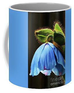 Bowing Blue Poppy Coffee Mug