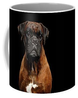 Boxer Coffee Mug by Sergey Taran