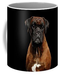Coffee Mug featuring the photograph Boxer by Sergey Taran