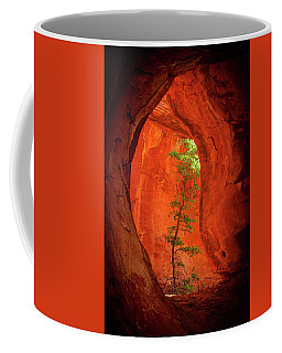 Boynton Canyon 04-343 Coffee Mug