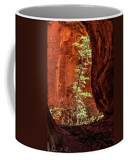 Boynton Canyon 07-034 Coffee Mug