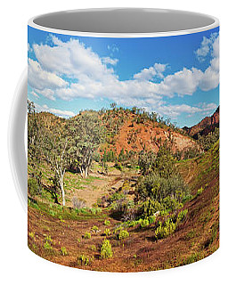 Coffee Mug featuring the photograph Bracchina Gorge Flinders Ranges South Australia by Bill Robinson