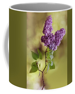 Branch Of Fresh Violet Lilac Coffee Mug