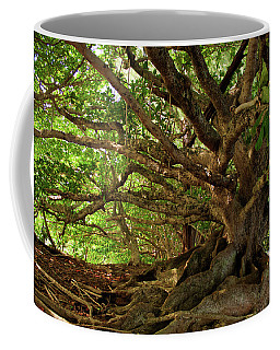 Branches And Roots Coffee Mug by James Eddy