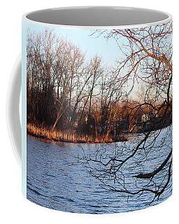 Coffee Mug featuring the photograph Branches Over Water by Melinda Blackman