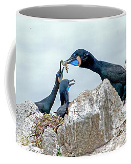 Brandt's Cormorant Feeding Family Coffee Mug