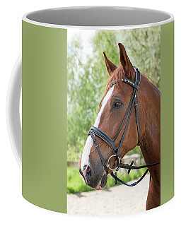 Brandy Coffee Mug