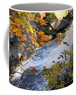 D30a-18 Brandywine Falls Photo Coffee Mug