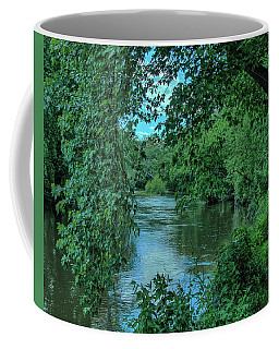 Coffee Mug featuring the photograph Brandywine River by Richard Goldman