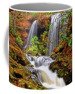 Brasstown Falls 013 Coffee Mug by George Bostian