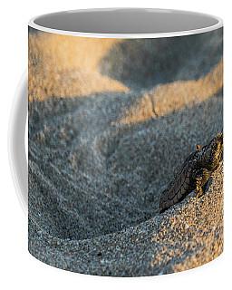 Brave Beginnings Sea Turtle Hatchling Delray Beach Florida Coffee Mug