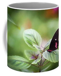 Coffee Mug featuring the photograph Brave Butterfly  by Cindy Lark Hartman