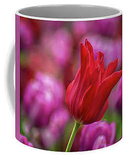 Coffee Mug featuring the photograph Brazenly Delicate by Bill Pevlor