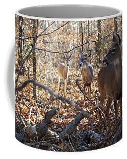 Breakfast In The Woods Coffee Mug
