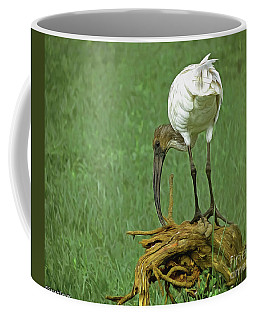 Breakfast With The Ibis Coffee Mug