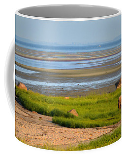 Breakwater Beach At Low Tide Coffee Mug