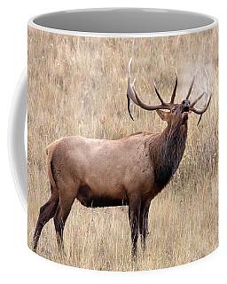 Breath Of Autumn Coffee Mug by Jack Bell